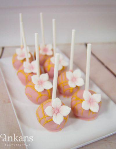 Cakepops006