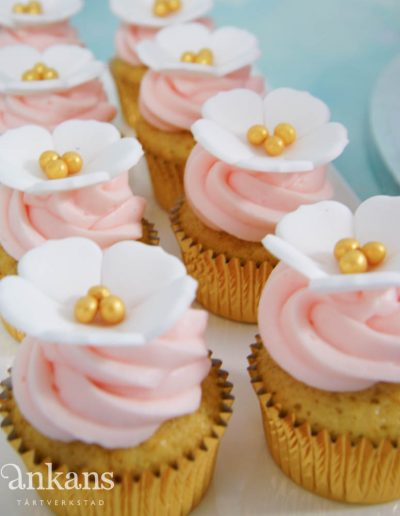 Minicupcakes001