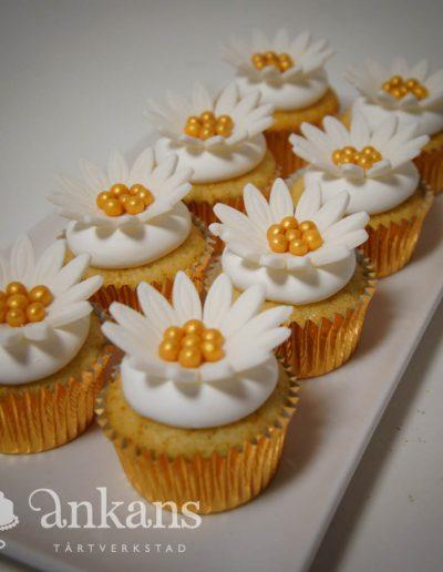Minicupcakes003