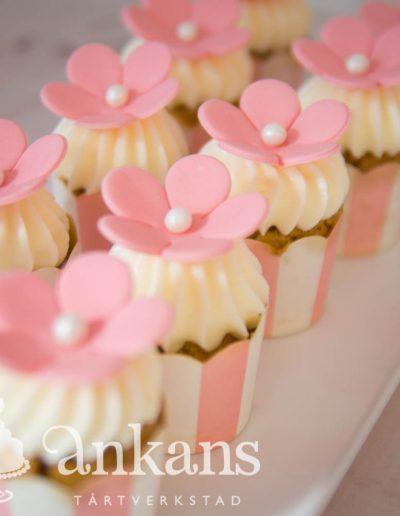 Minicupcakes101