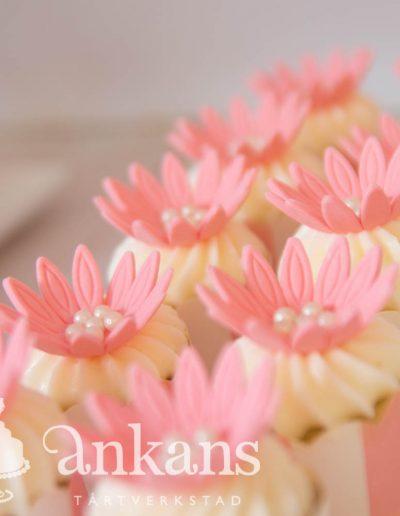 Minicupcakes102