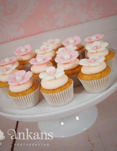 Minicupcakes103