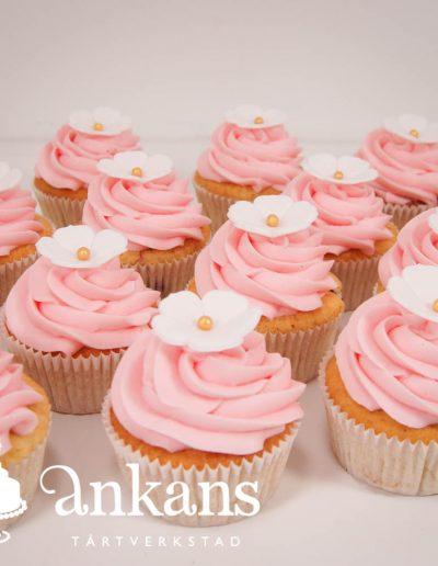 cupcakes-med-rosa-frosting-och-vita-blommor