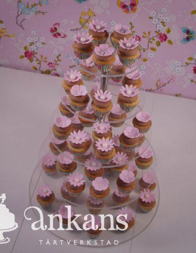 Miniic-cupake-tree